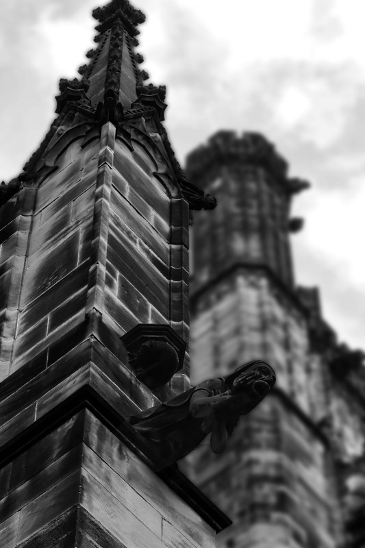 gallery for gargoyle architecture gothic